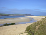 Visitors and Tourists Walking Dogs on Beach at Camel Estuary Near Rock, North Cornwall, England, Uk