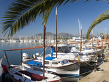 Traditional Boats Moored in the Harbour, Port D'Alcudia, Mallorca, Balearic Islands, Spain, Mediterranean, Europe