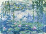Waterlilies, 1916-19