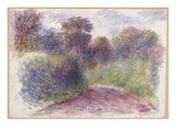 Country Lane (W/C on White Wove Paper)