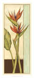 Tropicana Botanical II