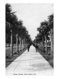 Palm Beach, Florida - Walking Down Ocean Avenue