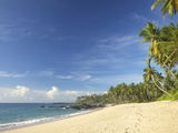 View of the Unspoilt Beach at Palm Paradise Cabanas, Tangalle, South Coast, Sri Lanka, Asia