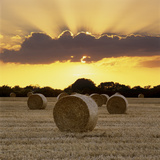 Hay Bales at Sunset, East Sussex, England, United Kingdom, Europe