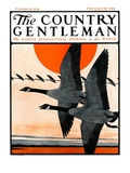 """""""""""Flock of Geese in Formation,"""""""" Country Gentleman Cover, November 15, 1924"""