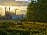 UK, England, Cambridge, the Backs and King's College Chapel