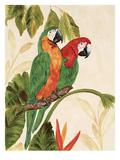 Tropical Green Pair