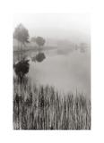 Lakeside Mist