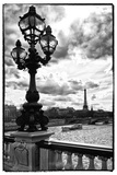 Detail of the Pont  Alexander III bridge - with the Eiffel Tower in the background - Seine River - Paris - France