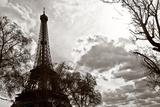 The Eiffel Tower - Paris - France