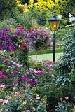 Butchart Gardens in Full Bloom, Victoria, British Columbia, Canada