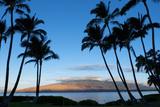 Kihei, Maui, Hawaii, USA