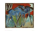 Blue Foal