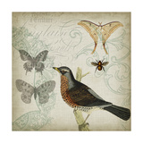 Cartouche & Wings II