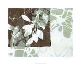 Leaf Inclusion III