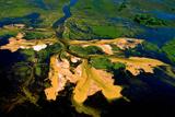 Delta Water Receding