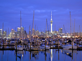 Auckland City and Harbour, Auckland, New Zealand, Pacific Ocean.