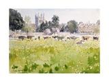 Looking across Christ Church Meadows, 1989