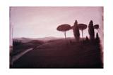 Tuscan Landscape, 1992