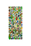 Limited Coleoptera Mosaic
