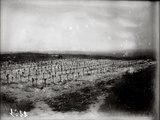 The French Cemetery at Plateau de Californie, Craonne, 1917