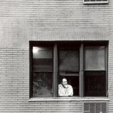New York Window, 2006