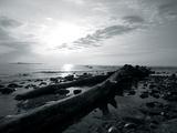 Coastal Path IV