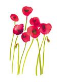 Flower Garden V
