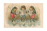 Three Frogs Singing