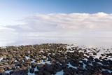 Stromatolites In Australia