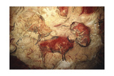 Bison, from the Caves at Altamira, C.15000 BC