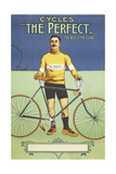 Poster Advertising 'The Perfect' Bicycle, 1895