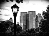 Floor Lamp in Central Park Overlooking Buildings, Manhattan, New York, Black and White Photography