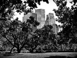 Place for Lovers in Central Park, Manhattan, New York City, Black and White Photography