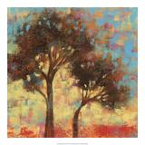Kaleidoscope Trees II