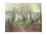 Lane to the Shore, Llangwm, Pembrokeshire