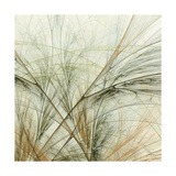 Fractal Grass VI