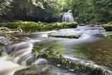 Westburton Waterfall, Westburton, Yorkshire Dales, Yorkshire, England, United Kingdom, Europe