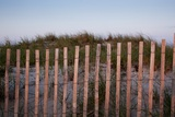 Fence in Sand Dunes, Cape Cod, Massachusetts