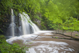 Waterfall, Fairy Glen Rspb Reserve, Inverness-Shire, Scotland, UK, May