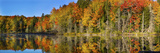 Trees in Autumn at Lake Hiawatha, Alger County, Upper Peninsula, Michigan, USA