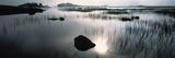 Rannoch Moor Highlands Scotland