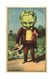 1st Premium Cabbage Head Trade Card