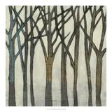 Birch Line II