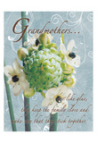 Grandmothers Glue 2