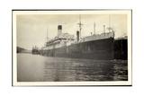 Foto Vasari, Lamport and Holt Line, Dampfer, Steamer