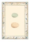 Antique Eggs II