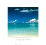 Tropical Horizons I
