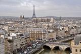 View of Paris from Notre Dame, Paris, France