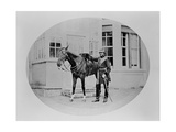 An Unidentified Cavalry Officer and His Mount, 1875